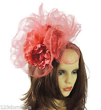9817 Ladies Day Mini Hat /& Rose Fascinator with Net on Clip Prom Wedding