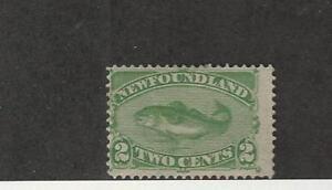 Newfoundland, Postage Stamp, #46 Mint Hinged, 1880 Fish