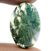 Cts. 16.10 Natural Designer Grass  Moss Agate Cabochon Oval Cab Loose Gemstone