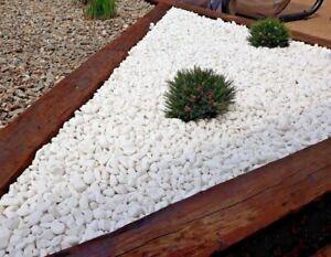 Decorative MARBLE WHITE EXTRA PURE Stones / Gravel / Pebbles  * HOME & GARDEN *