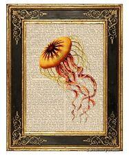 Jellyfish Art Print on Antique Book Page Vintage Illustration Discomedusae 5