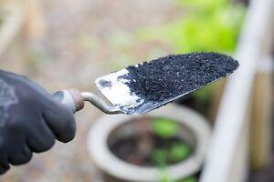 Biochar for Gardeners, 100% organic soil improver: SoilFixer