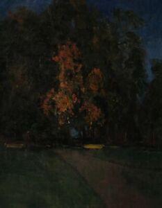 Luma From Flesch Brunningen? - Park Landscape