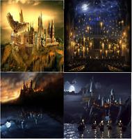 5D Diamond Painting Harry Potter Hogwarts School Night Castle Full Drill Craft