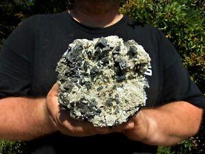 XL Quartz on Galena with Sphalerite Crystal Cluster Display Specimen Bulgaria