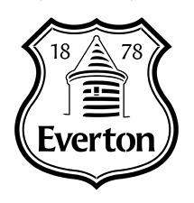 high detail airbrush stencil everton fc football logo FREE UK POSTAGE