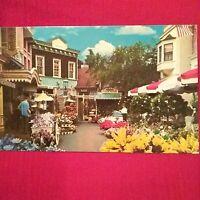 Disneyland The Magic Kingdom FLOWER MART Main Street USA Vintage Postcard NEW