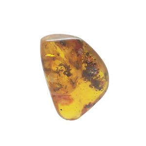 Bernstein aus der Ostsee mit Insekten Einschluss Inkluse poliert 2-40g amber
