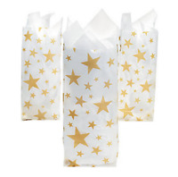 Pack of 12 - Gold Star Frosted Bags - Party Gift Bags