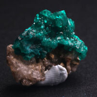 TOP!!DIOPTASE NAMIBIA MINERALS SPECIMENS CRYSTALS GEMS 17.7CT