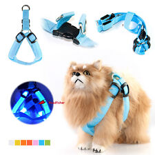 New Dog Cat Pet Harness Led Flash Collar Safety Strape Rope Walking Lead Night