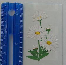Mrs Grossman DAISY - Half Strip With Paper Whisper Sticker