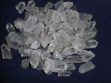 Quartz Crystal Points 5 POUNDS   Lot Bulk Wholesale Collection