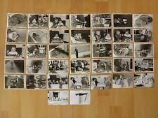 Konvolut Sammlung 37x altes Foto alte Fotos Menschen Kinder spielen Weihnachten