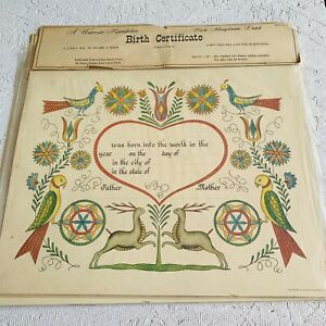 Vintage Birth Certificate Watercolor Reproduction New Birds Zook 1967 Dutch