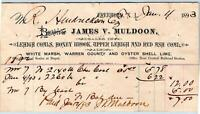 1893 FREEHOLD NJ*MULDOON*LEHIGH HONEY BROOK & RED ASH COALS*OYSTER SHELL LIME