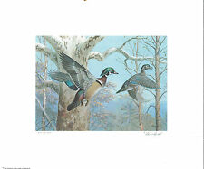 Pennsylvania #1 1983 State Duck Stamp Print Wood Ducks by Ned Smith