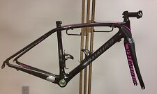 2013 Specialized Amira Frame and Fork, Size 51cm