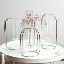 Nordic Creative Vase Home Decor Golden Glass Vase Hydroponic Plant Holder Flower