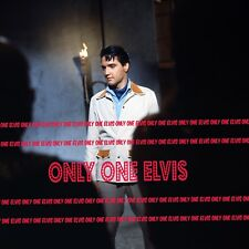 "ELVIS PRESLEY in the Movies 1965 8x10 Photo ""Harum Scarum"" Movie Scene 06"