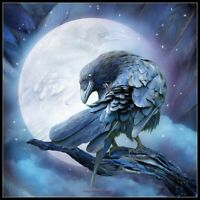 Raven Moon - DIY Chart Counted Cross Stitch Patterns Needlework Embroidery