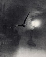 1930s Bill BRANDT Vintage Photogravure Bird Flying over London Harbor FRAMED COA