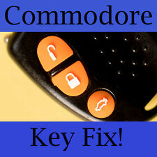 Holden Commodore Key Buttons VS VT VX VY VZ Orange Set