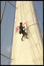 615043 Applying Racing Numbers To Hoisted Sail St Tropez A4 Photo Print