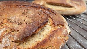 Sauerteig FRISCH Roggenvollkornmehl Anstellgut! Natursauerteig – knuspriges Brot