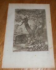 1668 Antique Old Master Print Wenceslaus Hollar The Bear from Ogilby's Aesop