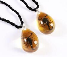 2 pcs LOVER NEW BLACK SCORPION LUCITE PENDANT JEWEL TAXIDERMY SWEET GIFT