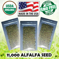 Sprouting Seeds Pure USDA Organic ALFALFA Sprouts - (20 Gram) 11,000 Seeds USA!