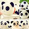 Kuscheltier Panda Stofftier Plüsch Puppe Figur Plüschtier Spielzeug Geschenk DE