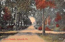 Jacksonville FL~Horse Buggy Drive in Riverside~Tree Signs~Bridge~Dirt Road~1913