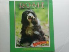 Houghton Mifflin Soar to Success: Rosie Visiting Dog Lv4 ROSIE VISITING DOG (Rea
