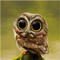 5D Diamond Painting Embroidery Cross Craft Stitch Arts Little Owl Animal Bird
