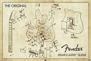 FENDER - GUITAR DIAGRAM POSTER - 24x36 SHRINK WRAPPED - STRATOCASTER 24959