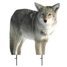 "Montana Kojo Coyote Decoy 21""x22"" Predator"