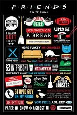 Friends poster INFOGRAFIC Central perk HOW YOU DOIN? size 61 cm X 91.5 cm