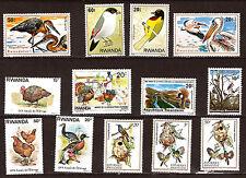 rwanda Vögel und Geflügel Hühnerstall:Pwo,Enten,Puten,verschiedene 52M-537