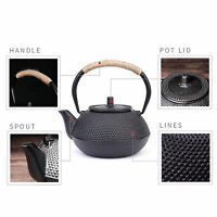 Iron Tea Pot with Stainless Steel Infuser Cast Iron Kettle for Boiling Water Hea