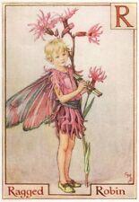 R = Ragged Robin Fairy by Cicely Mary Barker. Alphabet Flower Fairies c1934