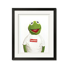 Supreme x Kermit Photo By Terry Richardson Urban Street 22x28 Poster Print
