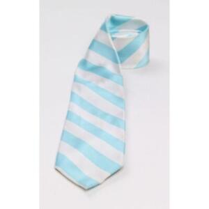 Alexander Logan Neckwear Mens Stripes Regular Tie Necktie Blue/White Stripe Blue