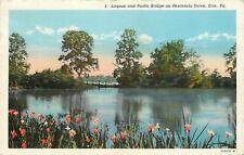 Erie Pennsylvania~Lagoon & Rustic Bridge on Peninsula Drive~Flowers~1948