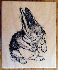 PSX Bunny Rabbit Rubber Stamp D-1269