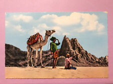 Lookout in the Desert Mountains Camel Vtg Postcard Posted United Arab Republic
