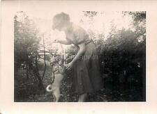 Girl Woman Holds Up Treat For Dancing Chihuahua? Rat Terrier? Dog 1940s Photo