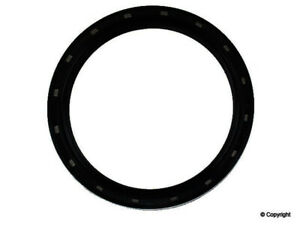 Engine Crankshaft Seal-Stone Rear WD Express 225 51071 368