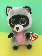 NEW TY Beanie Boo's ROCCO RACOON